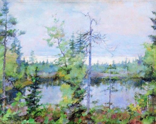 Рождественский В. В. Беломорье. Морошковое болото