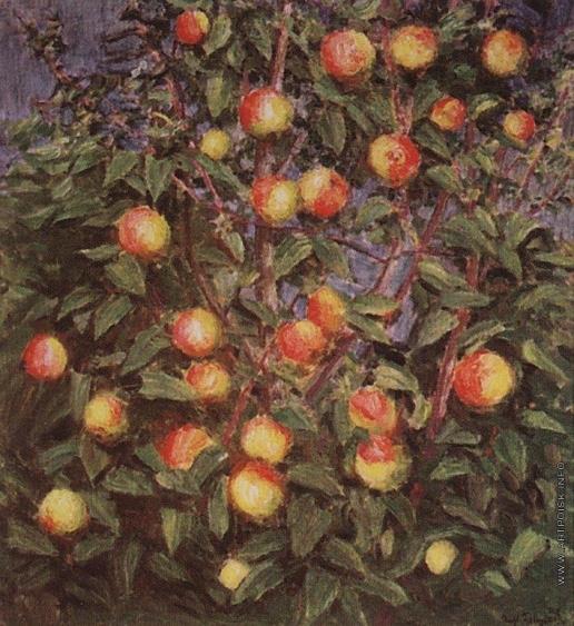 Грабарь И. Э. Ветка яблони
